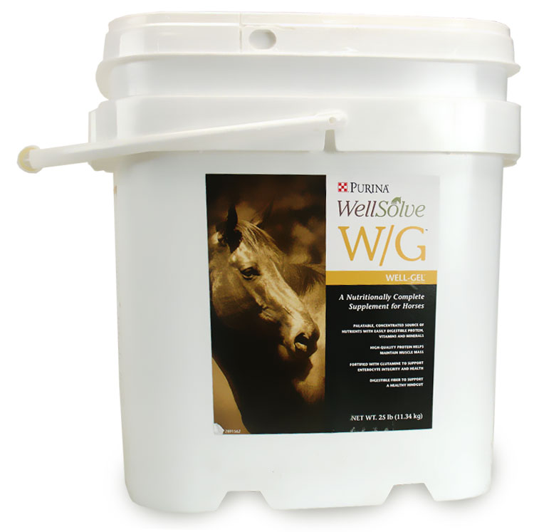 Image of Purina Wellsolve W/G (25 lbs)