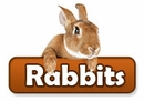 Rabbit / Bunny Products