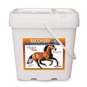 RECOVERY-HORSE-JOINT-CARE