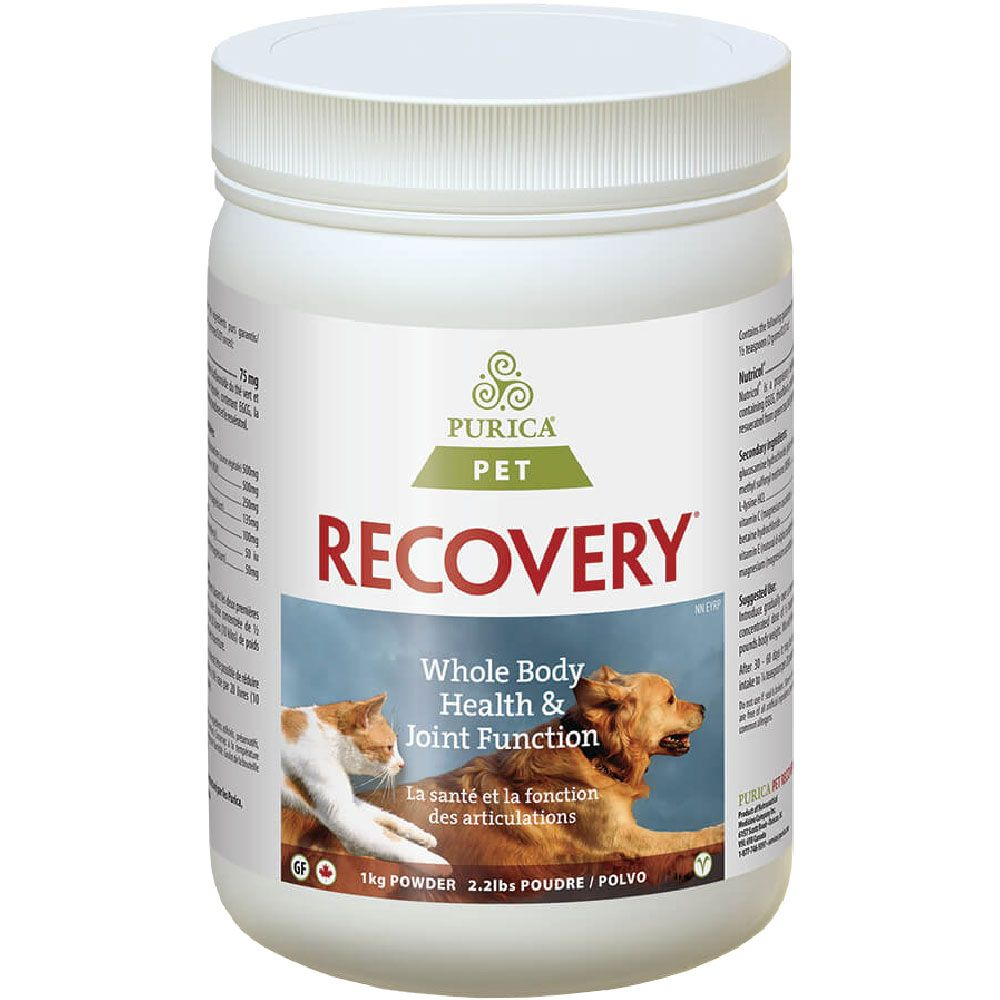 RECOVERYSA1KG