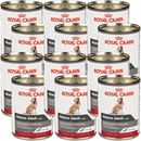 Royal Canin Advanced Nutrition Mature Adult Canned Dog Food (12x13.58 oz)