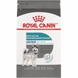 Royal Canin Large Breed Joint & Coat Care Dry Dog Food (30 lb)