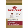 Royal Canin Puppy Cavalier King Charles Dry Dog Food (3 lb)