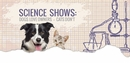 Science Shows Dogs Love Owners, Cats Don't
