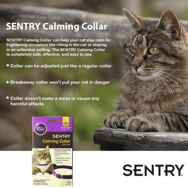 SENTRY-CALMING-COLLAR-CATS-3-PACK
