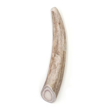 SPIZZLES-DEER-ANTLER-DOG-CHEW-SOLID-SMALL