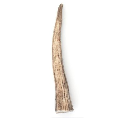 SPIZZLES-ELK-ANTLER-DOG-CHEW-SOLID-SMALL