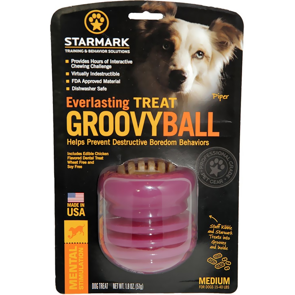 Starmark Everlasting Groovy Ball - Medium im test