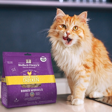 STELLA-CHEWYS-FREEZE-DRIED-CHICK-CHICK-CHICKEN-MORSELS-DINNER-CATS-8-OZ