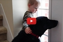 The Dog Is Moping By The Door So His Littlest Human Comes To The Rescue