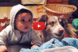 """The Parents Are Trying To Teach The Baby To Say """"Mama"""" But You'll Laugh At The Dog!"""