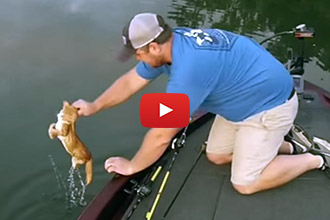 These Heroes Bring A Whole New Meaning To Catfishing