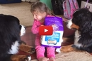 These Two Giant Dogs Are So Gentle With Their Little Human