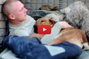 This Dog Spent Her Entire Life Serving The US Military, Wait Until You See Her Happy Ending