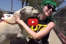 This Dog Was Abandoned In The Heat, But Watch What Happens When They Go To Rescue Her