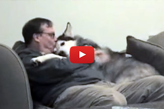 This Is One Dog Who Loves His Human!