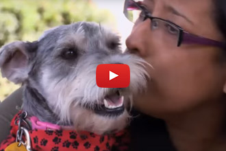 This Is One Reunion That Will Bring Tears To Your Eyes
