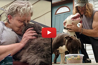This Woman's Mobile Food Bank For Pets Is Unlike Any Other Charity