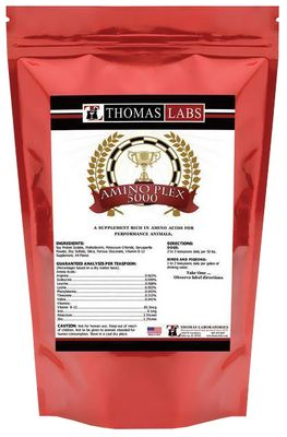 Thomas Labs Amino Plex 5000 Powder (16 oz)