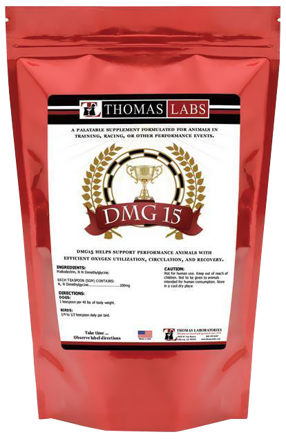 Thomas Labs DMG 15 Powder (16 oz)