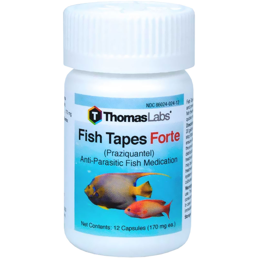 THOMAS-LABS-FISH-TAPES-FORTE-170-MG-10-COUNT