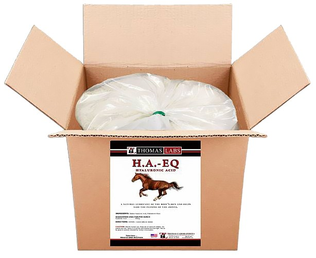 THOMAS-LABS-HORSE-JOINT-CARE