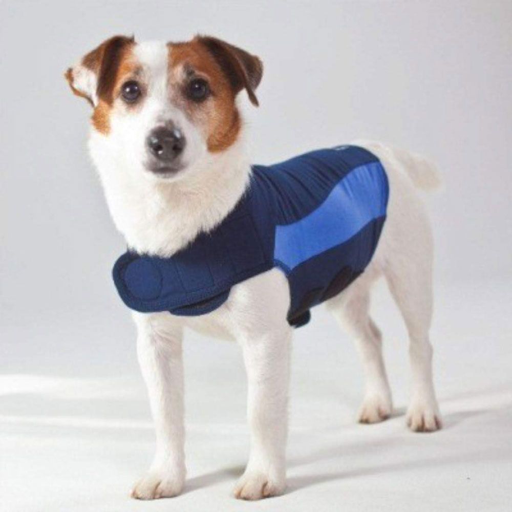 ThunderShirt Dog Anxiety Solution - Blue Polo (MEDIUM) im test