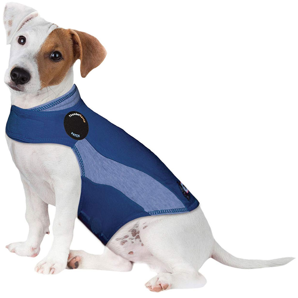 ThunderShirt Dog Anxiety Solution - Blue Polo (SMALL) im test
