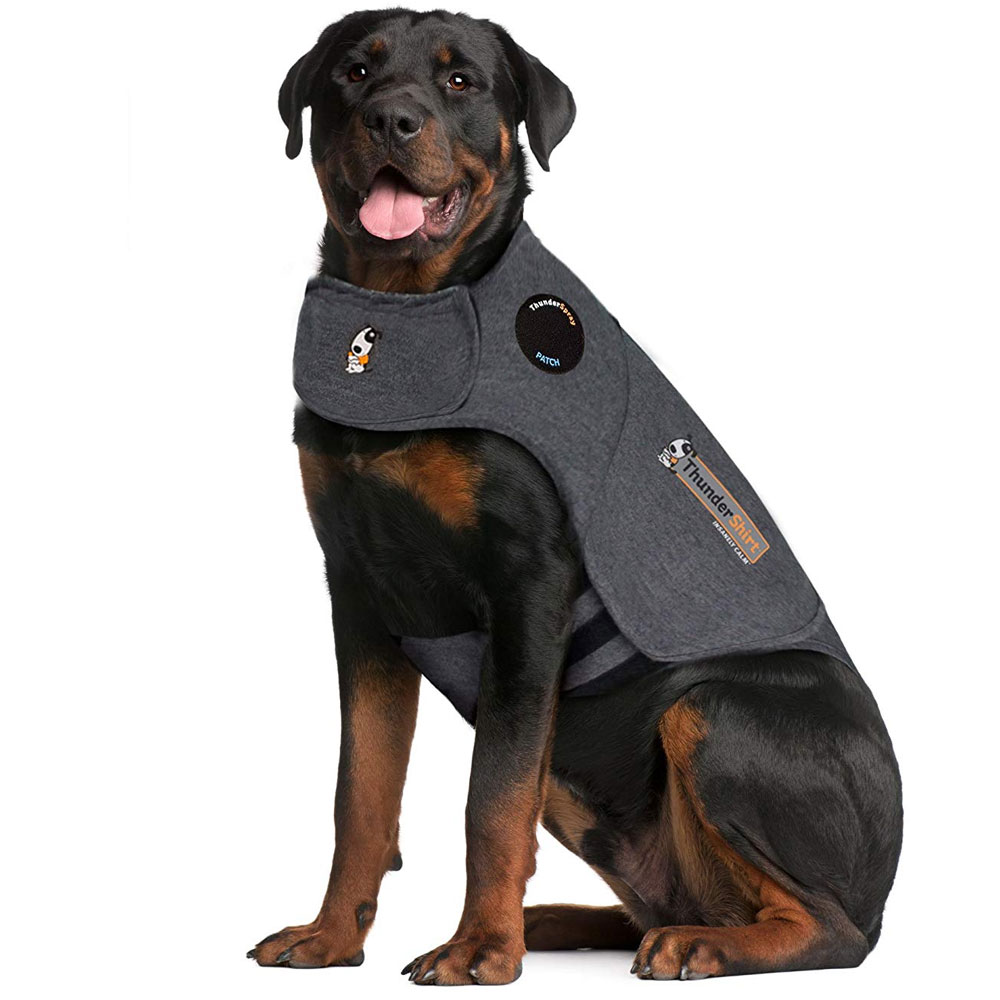 ThunderShirt Dog Anxiety Solution - Heather Gray (XXLARGE) im test