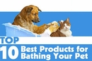 Top 10 Bath Products