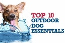 Top 10 Outdoor Dog Essentials