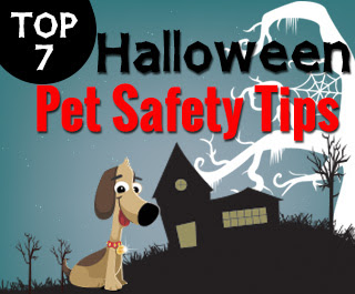 Top 7 Halloween safety Tips
