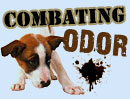 Top Products For Combating Pet Odors