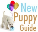 Top Products For New Puppies