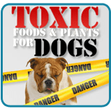 Toxic Foods & Plants for Dogs