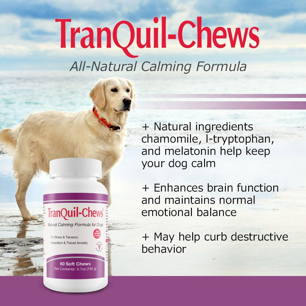 TRANQUIL-CHEWS-FOR-DOGS-60-SOFT-CHEWS