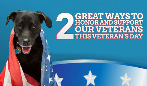 Two Great Ways to Honor and Support Our Veterans This Veteran's Day
