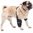 Universal Pet Therapy Wrap with Therapy Gel - Carpal/Elbow (Small)