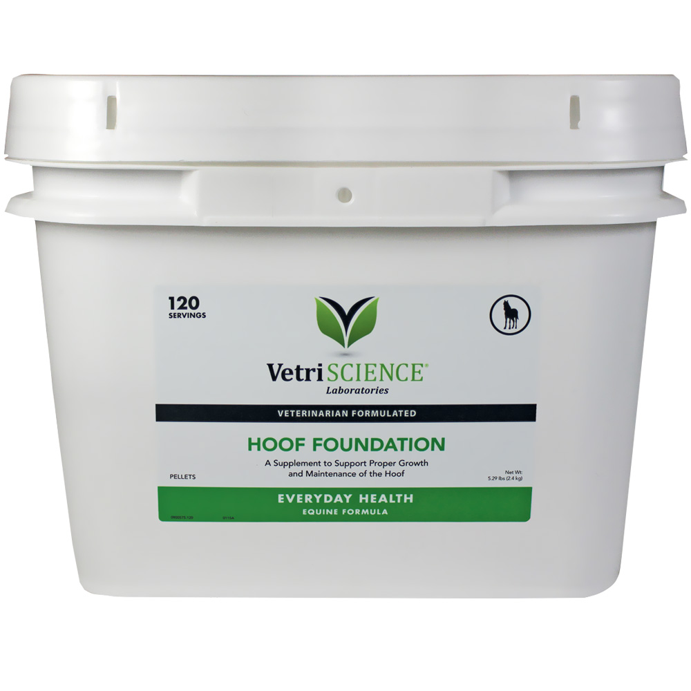 VETRI-SCIENCE-HOOF-FOUNDATION-120-SERVINGS