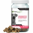 VetriScience Probiotic Everyday for Dogs - 60 Bite-Sized Chews
