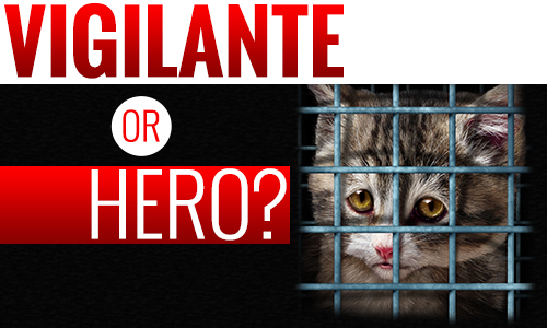 Vigilante or Hero? Retired Optometrist Arrested for Taking Cat from Allegedly Abusive Home
