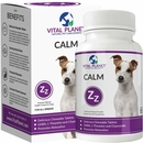 Vital Planet Calm (60 Chewable Tablets)