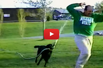 Watch This Dog Get His Owner Back With The Hose!