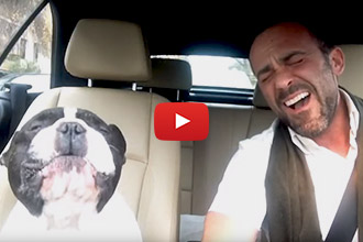 Watch This French Bulldog Sing A Duet With His Human