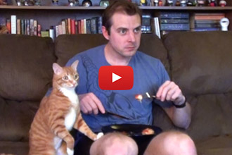 Watch This Guy Try To Eat With His Cat Around!
