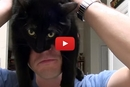 Watch This Video To Find Out How Your Cat Has Trained You!