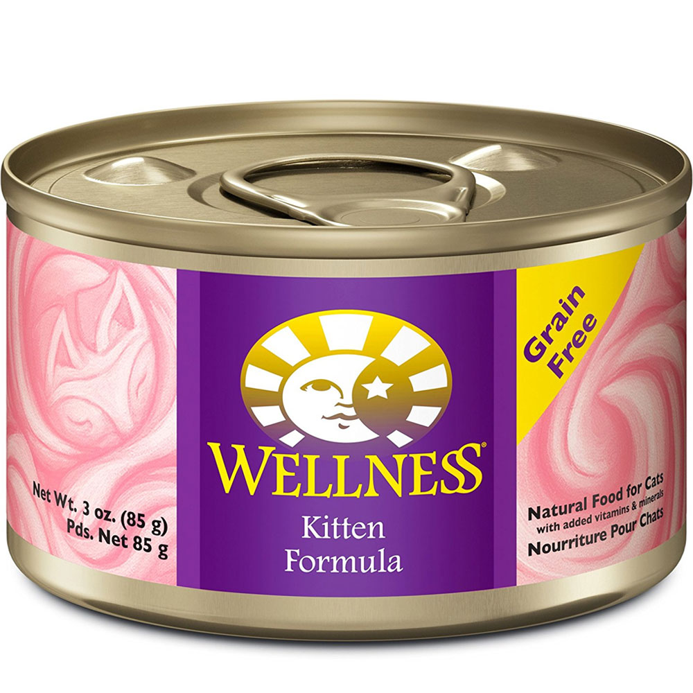 Wellness Kitten Food (3 oz) im test