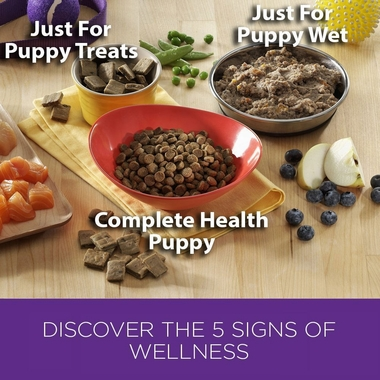 WELLNESS-PUPPY-BITES-LAMB-SALMON-3-OZ