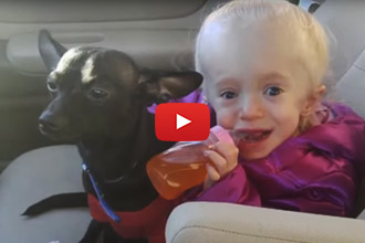 What Better Life For A Shelter Dog Than To Become The Guardian Of His Own Little Angel!