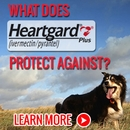 What Does Heartgard Plus Protect Against?